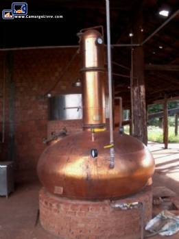 Manufactures of cachaça